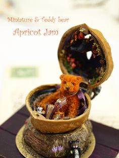 Miniature and teddy in a walnut shell by Apricot Jam