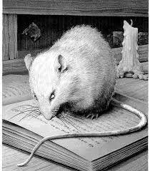 Bildergebnis für walter the story of a rat