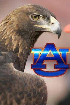 Auburn University-War Eagle is their cry! Sec Football, Auburn Football, College Football Teams, Clemson, Football Parties, Football Art, Auburn Vs, Auburn Alabama, Auburn Tigers