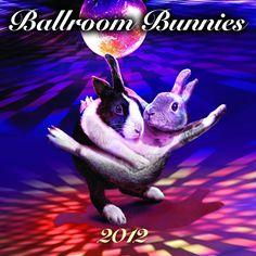 Ballroom Bunnies calendar cover