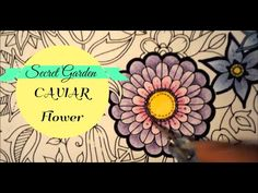 juliefullman adult colouring video tutorials