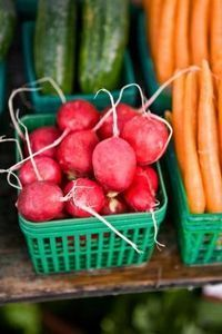 What to Plant in Fall Vegetable Gardens in Alabama