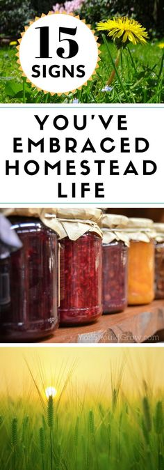 It takes a special kind of person to be a homesteader. But once you've embraced the homestead life, there's no going back. 15 signs you've embraced the homestead life. via @whippoorwillgar