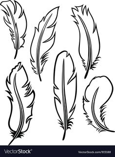 Feather set vector image on VectorStock Feather Stencil, Feather Template, Feather Drawing, Watercolor Feather, Feather Art, Feather Pattern, Feather Painting, Wood Feather, Feather Vector
