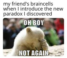 Paradox Movie Memes, Funny Memes, New Friends, My Friend, Fairy Tail Meme, Blockbuster Movies, Know Your Meme, Paradox, How I Feel
