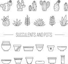 Set of succulent plants, cactuses and pots.- Set of succulent plants, cactuses and pots. Linear botanical vector… Set of fresh plants and cactus and cookware. Succulents Drawing, Cactus Drawing, Plant Drawing, Planting Succulents, Succulents Art, Succulents Wallpaper, Propagating Succulents, Doodle Drawings, Doodle Art