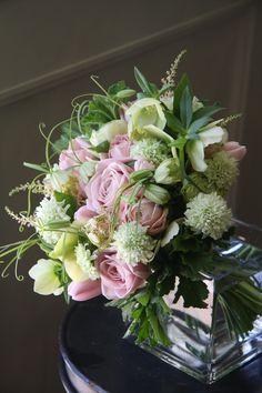 Rosa, Tulipa, Helleborus, Scabiosa,Ranunculus, Fritillaria •