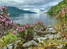 Whitebridge - Looking up Loch Ness towards Inverness - Scotland.