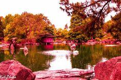 Auburn Botanic Garden