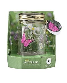 My Butterfly Collection - Animated Butterfly in a Jar - Pink Morpho >>> Check out this great product. (This is an affiliate link) Morpho Butterfly, Glass Butterfly, Monarch Butterfly, Black Side Bag, Decorative Accessories, Clothing Accessories, Butterflies Flying, Cute Posts, Jar Gifts
