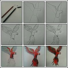 How to draw - tutorial