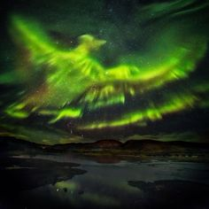 A photographer taking pictures of the Aurora Borealis has captured what appears to be a huge phoenix rising from the ground and flying over Iceland. The Aurora is an incredible light show caused by. Aurora Borealis, Beautiful Sky, Beautiful Pictures, Beautiful Lights, Best Pictures, Astronomy Pictures, Foto Real, Les Religions, No Photoshop