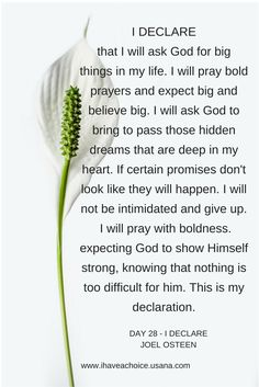 Day 28- I DECLARE by Joel Osteen I will ask God for big things in my life. I will ask bold prayers
