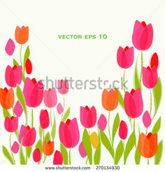 Tulip - Colorful flower vector illustration greeting card