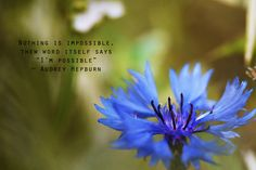 Spring Quotes Magnificent Spring Quotes  You Have Read This Article Quotes About Spring .