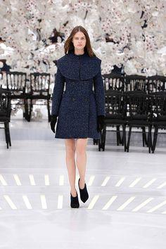 クリスチャン ディオール(Christian Dior) Haute Couture 2014AWコレクション Gallery53