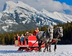 Sleigh rides - on the list for things to do in Banff!