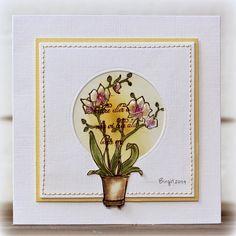 Rapport från ett skrivbord: Orkidé från Vilda Stamps