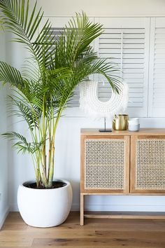 Expert advice: Five steps to a stylish seaside abode - The Interiors Addict,Coastal greenery If you're the sort who dresses a specific way to achieve a specific look then you understand that living room decor goes far beyond s. Style At Home, Decoration Bedroom, Room Decor, Home Design, Design Ideas, Small Space Design, Bedroom Plants, Living Room Plants, Beach House Decor