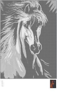 Gallery.ru / Фото #1 - horses - miracela