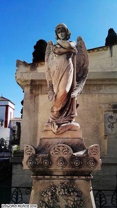 Tumba con un hermoso ángel. Tomb with a beautiful angel.