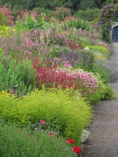 arley hall gardens herbaceous borders at arley hall and gardens pictured in september. Black Bedroom Furniture Sets. Home Design Ideas