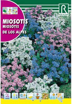 Évelő virágok : Nefelejcs De Los Alpes Plants, Alps, Plant, Planets