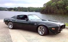 Firebird Trans Am. Check out Facebook and Instagram: @metalroadstudio Very cool!