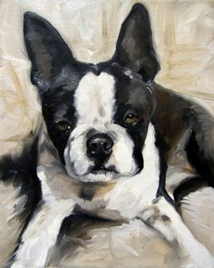 black and white boston terrier dog puppy art by mary sparrow smith from hanging the moon