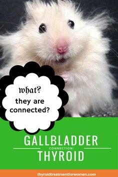 Are the signs and symptoms of gallbladder disease and thyroid disease connected?<br>#gallbladder #thyroid #health #naturalhealth #healing<br>