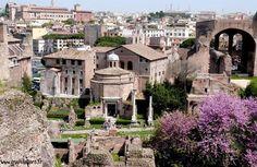 Italie - Visite du Mont Palatin à Rome