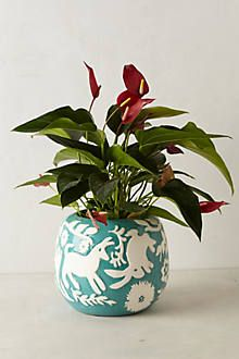 Concha Garden Planter #anthropologie (affiliated link)