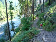 Umpqua mountain biking