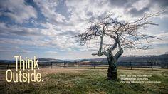 Virginia State Parks, Sky Meadows State Park