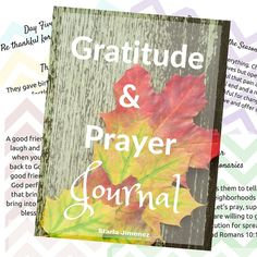 30 Days of Gratitude and Prayer Challenge | Pressing In and Pressing On with Starla J.