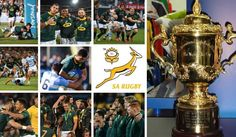 The wait is over for South Africa's rugby fans anxious to hear coach Rassie Erasmus announce the final Springbok Squad for the Rugby World Cup Cycling Quotes, Cycling Art, Women's Cycling Jersey, Cycling Jerseys, South African Rugby, Rugby World Cup, Bicycle Design, Extreme Sports