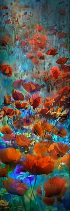 PIERRETTE LU / МАКИ / POPPY FLOWERS