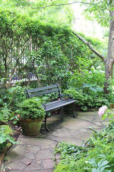 Garden in Charleston - Benched