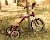 Vintage Radio Flyer Tricycle, Vintage Bicycle, Toys from the Past, Vintage Toys 8 x 10 Fine Art Photography