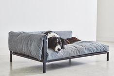 Scandinavian simplicity and functionality melt together in the minimalist Brandina dog sofa, a modern reinterpretation of the chaise longue.