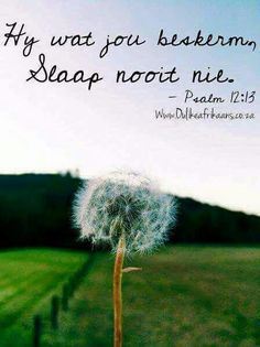 Vers Encouragement Quotes, Wisdom Quotes, Bible Quotes, Psalm 12, Afrikaanse Quotes, True Words, First Love, Inspirational Quotes, Sayings
