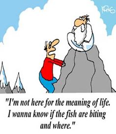 fish funnies - Google Search