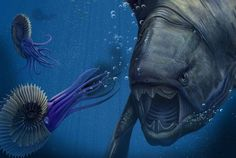 Dunkleosteus and Ammonites by Chris Tomlin