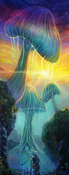 Psychedelic Shroom Fantacy