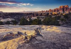 : Canyonlands National Park  The mighty Colorado and Green Rivers collide in the center of Canyonlands National Park to create three stunning & unique park districts: Island In The Sky Needles & The Maze.  This weekend we are celebrating the stunning vast & mysterious landscape of Canyonlands National Park. Learn more about Canyonlands on our website (Link in Bio) and tell us about your experiences at #CanyonlandsNationalPark