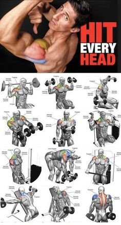 Workout-Schulter traf jeden Kopf – Carola Workout-Schulter traf jeden Kopf – Carola,Sport Workout-Schulter traf jeden Kopf – Related posts:The Workout to Have Ideal ABS in 30 DaysKiller ab workout-Killer ab. Gym Workout Tips, Weight Training Workouts, Biceps Workout, Fitness Workouts, No Equipment Workout, Workout Videos, Gym Workout Chart, Workout Men, Traps Workout