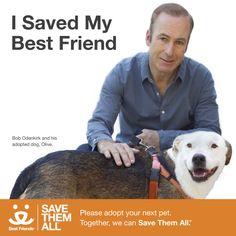 Better Call Saul's Bob Odenkirk Joins Best Friends Campaign   DogTipper.com
