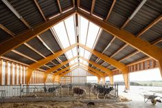 Stable But Not Staid: 8 Contemporary Approaches to Agricultural Typologies - Architizer