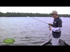 Jigging for Walleye - Here's a quick walleye fishing tip. Walleye Fishing Tips, Fishing Lures, Fishing Videos, Fishing Stuff, Gone Fishing, Best Fishing, Fishing Techniques, Bass Boat, Largemouth Bass