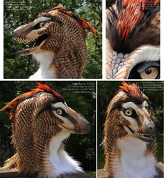 Kinglet the Raptor Masks/Costumes @ Featherdust.com Artist-Janice Miller